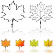 Stock Vector: Vector shapes of maple leaf