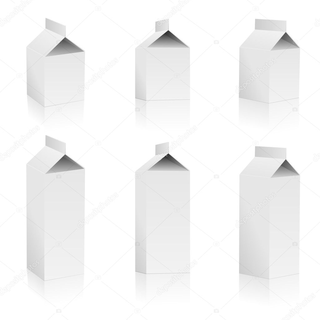 Set of blank milk packs isolated on white background. — Stock Vector #2824593
