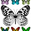 Butterfly vector template — Stockvektor