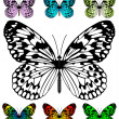 Royalty-Free Stock Imagem Vetorial: Butterfly vector template