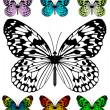 Kelebek vektör şablonu — Stok Vektör