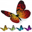 Colorful butterflies — Stock Vector #2832970