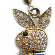 Постер, плакат: Gold earring playboy