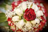 Bridal bouquet — Стоковое фото