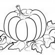 Pumpkin on white. - Stock Photo