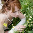 Stock Photo: Bride on grass