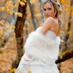 novia en otoño — Foto de Stock