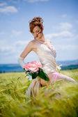 Bride posing in field — Stock Photo
