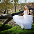 Woodland bride — Stock Photo