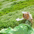 Stock Photo: Girl resting in grass