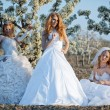 Three happy beautiful brides together — Stock Photo #2767711