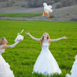 Young brides - Stock Photo