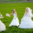 Young brides — Stock Photo #2767934