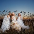 Evening brides - Stock Photo