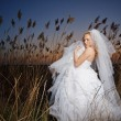 Bride — Stock Photo #2768012