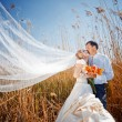 Kissing wedding couple — Stock Photo #2768020