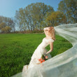 Bride posing in field — Stock Photo #2768035