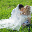 Loving wedding couple — Stock Photo #2768058