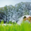 Loving wedding couple — Stock Photo