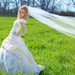 Bride posing in field — Stock Photo #2768177