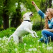 Woman with labrador — Stock Photo #2768245