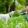 Woman with labrador — Stock Photo