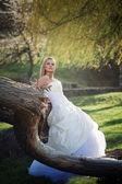 Bride n forest — Stockfoto