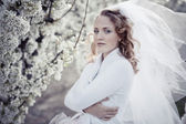 Serene portrait of bride — Stock Photo
