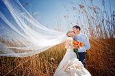 Líbání svatební pár — Stock fotografie