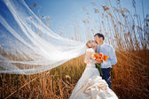 Pareja besándose boda — Foto de Stock