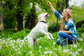 Donna con labrador — Foto Stock