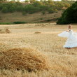Bride in field — Stock Photo