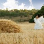 Bride in field — Stock Photo