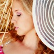 Pin-up girl resting in haystack - Stock Photo