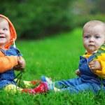 gêmeos — Foto Stock