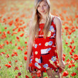 Girl in poppy field — Foto Stock