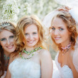 Stock Photo: Brides
