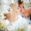 Kissing couple - Stockfoto