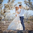 Spring wedding — Stock Photo