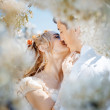 Kissing couple — Stock Photo #2787717