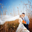 Kissing wedding couple - Stock Photo