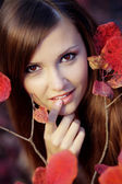 Autumn beauty — Stock Photo