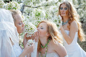 Brides — Stock Photo