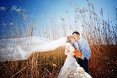 Kissing wedding couple — Stock Photo