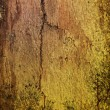 Royalty-Free Stock Photo: Wood grungy background