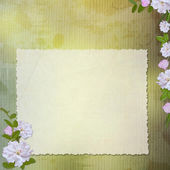 Grunge paper design for information i — Stock Photo