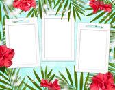 çerçeve ve çiçekler yaz arka plan — Stok fotoğraf