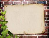 Vintage background for invitation — Stock Photo