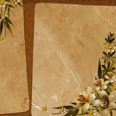 Vintage background for invitation — Stockfoto
