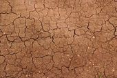 Cracked ground in drought — Stock Photo